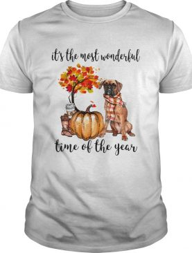 Boxer pumpkin Its the most wonderful time of the year shirt