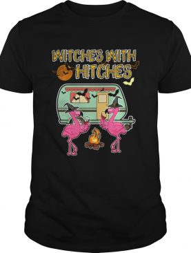 Halloween Flamingo Witches With Hitches Wine Lover Gift TShirt