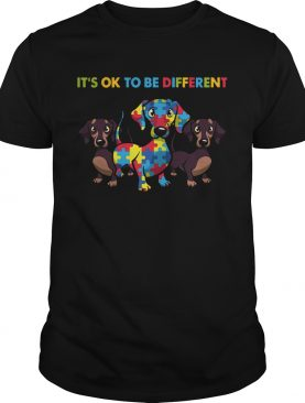 Dachshund Autism Its Ok To Be Different shirt