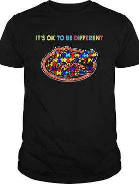 Florida Gators its ok to be different autism shirt