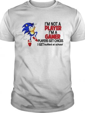 Sonic Im Not A Player Im A Gamer Players Get Chicks I Get Bullied At School shirt