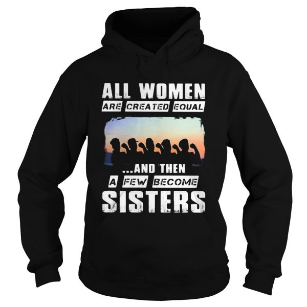 All women are created equal and then a few become sisters  Hoodie