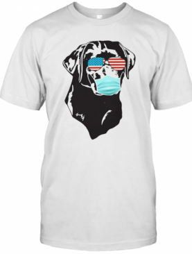 4Th Of July Dog Coonhound Glasses Mask T-Shirt