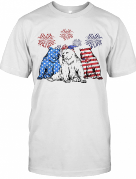 Independence Day Bears Wear Bow Tie Firework T-Shirt