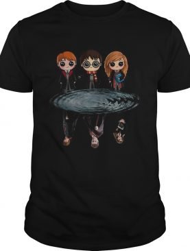 Harry Potter Ron Weasley And Hermione Reflection Water shirt