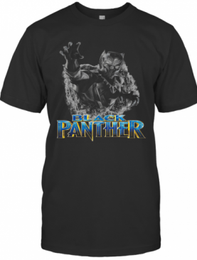 Black Panther Chadwick Boseman Thank You For The Memories T-Shirt