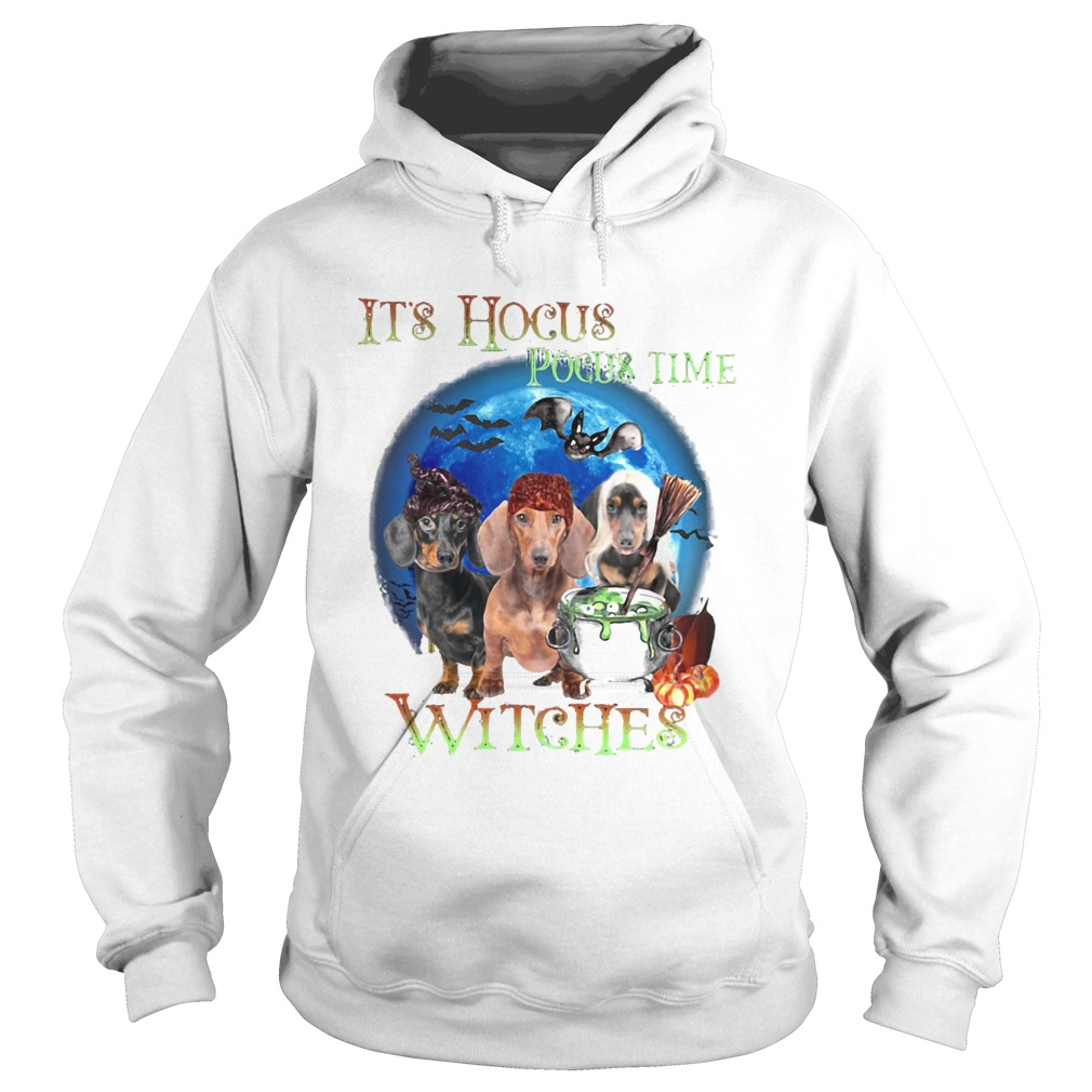 Halloween dachshund its hocus pocus time witches Hoodie