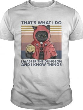 Thats What I Do I Master The Dungeon And I Know Things Vintage shirt