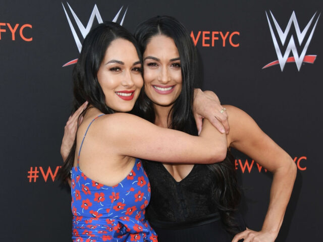 The Cutest Cousins Ever Brie and Nikki Bellas Sons Buddy and Matteo in New Pics