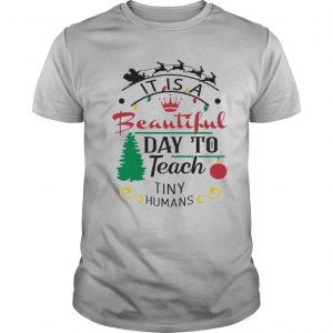 It Is A Beautiful Day To Teach Tiny Humans Christmas shirt