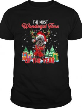 Bouvier Des Flandres Santa the most wonderful time of the year Christmas shirt